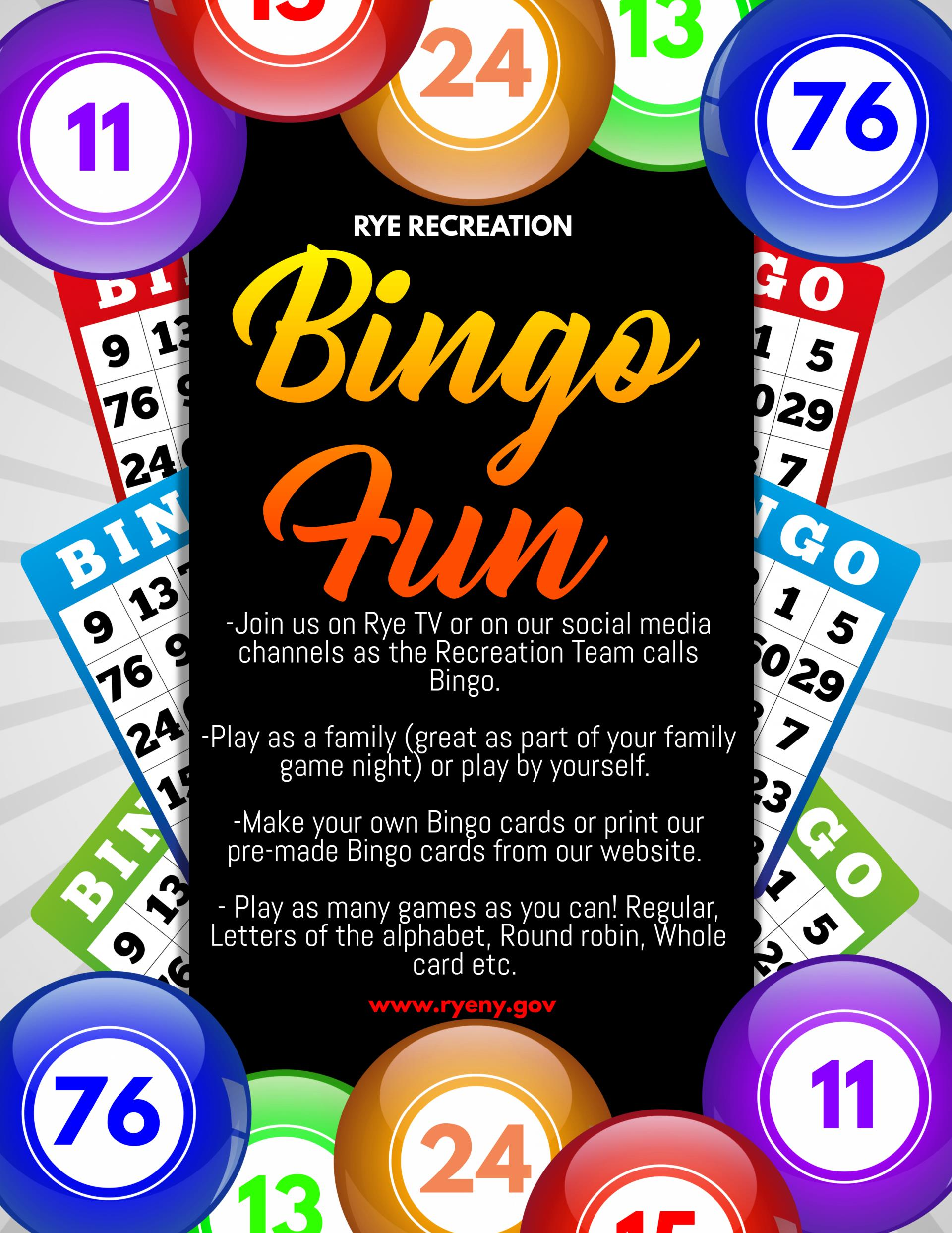 Bingo Fun Flyer
